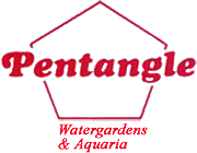 Pentangle Aquatics Ltd Knaphill, Woking