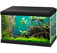 Ciano LED 20 (17L) Complete with Light & Filter. Black