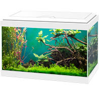 Ciano LED 20 (17L) Complete with Light & Filter. White