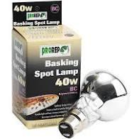 40W Basking Spot Lamp Bayonet