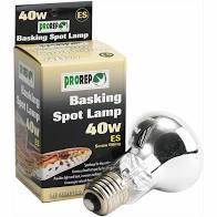 40W Basking Spot Lamp Screw