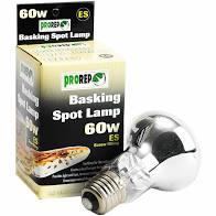60W Basking Spot Lamp Screw