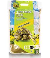 10L Tortoise Life